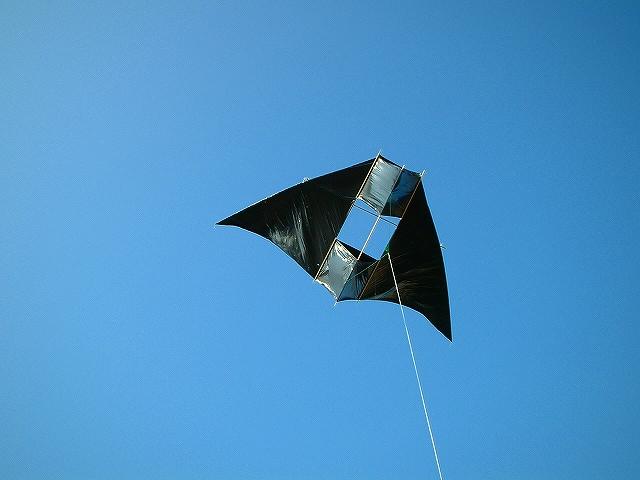 初代 ブラックデルタボックスです(1.6×3.73m) :: 65_1.jpg  : 223 KB